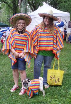 mexican-pugs.jpg